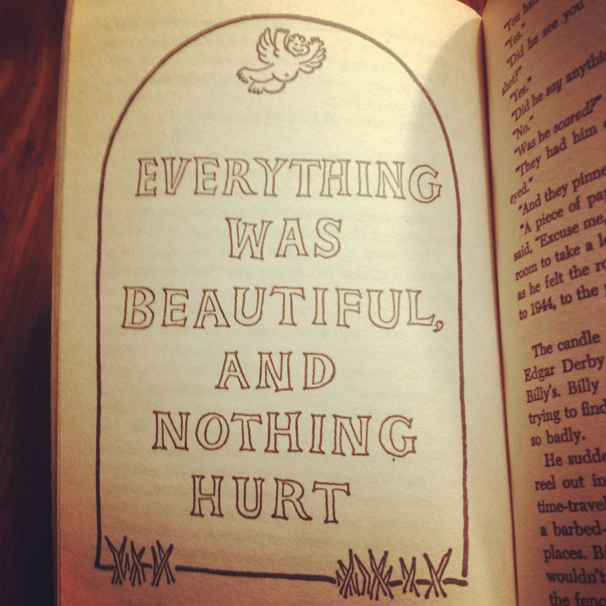 """Everything Was Beautiful, and Nothing Hurt."" 